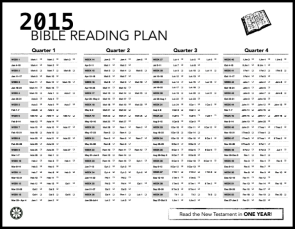 image about Printable Bible Reading Plans for Youth titled Everyday Bible reading through Pdf system the Per year contributions system